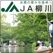 JA 柳川 - 柳川農業協同組合 (JA 柳川) の管内では、米や麦、大豆をはじめ、ナスやイチゴ、トマト、アスパラガスといった野菜や、ブドウやイチジクなどの果樹に至るまで、多様な農産物が生産されており、東京や大阪、福岡等を中心に全国へ販売しています。<br />また平成 23 年度から、市場規格に合わない農産物を活用した加工品の開発にも取り組んでおり、アイスやソース、ジャムなどを販売しています。